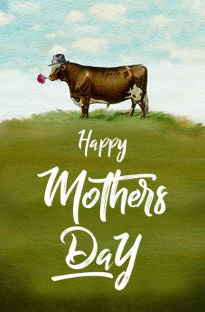 Mothers-Day-Steersons-WebTile